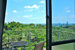 villa西表の室内からの眺望
