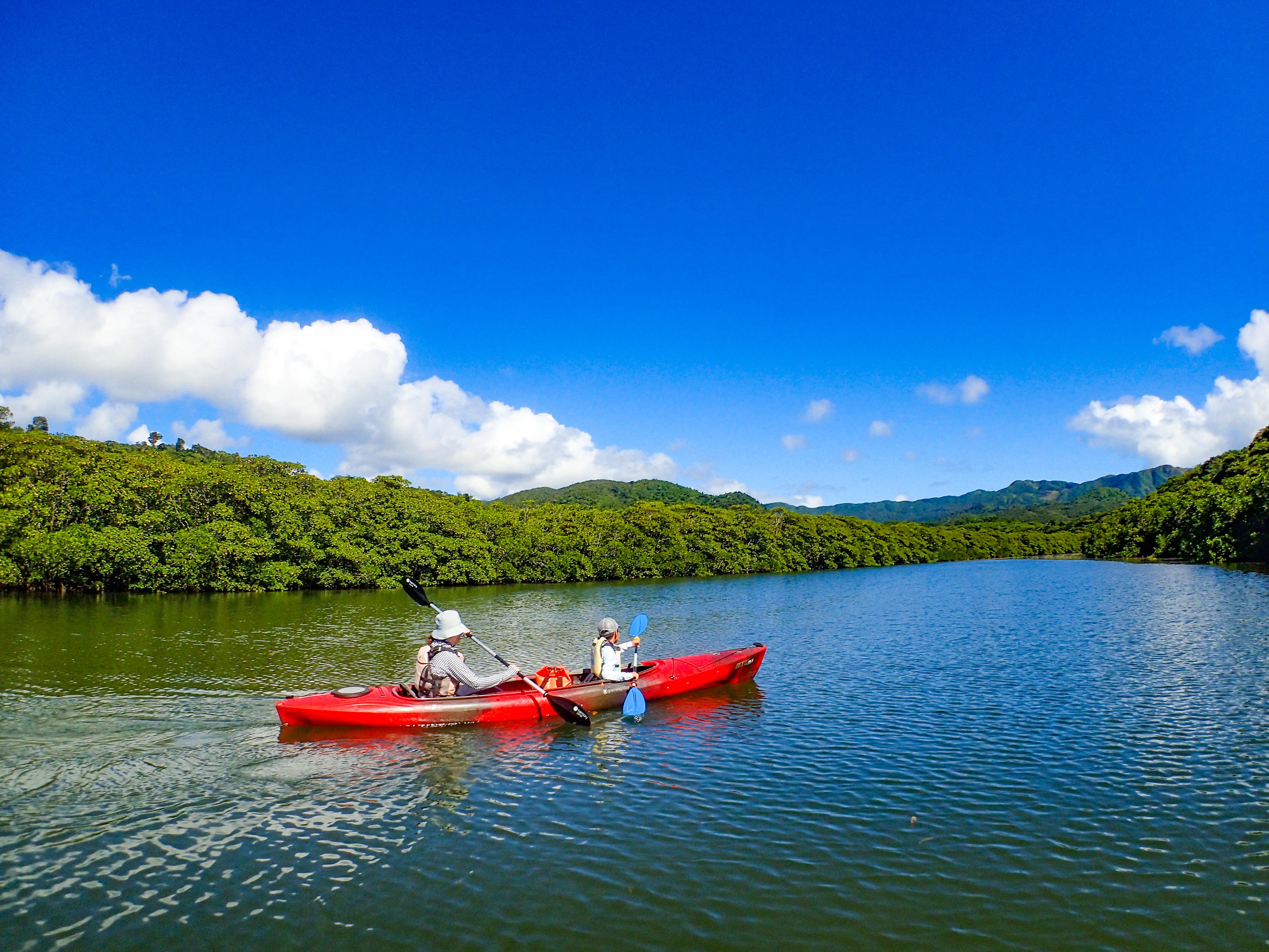 西表島のピナイサーラの滝カヌー