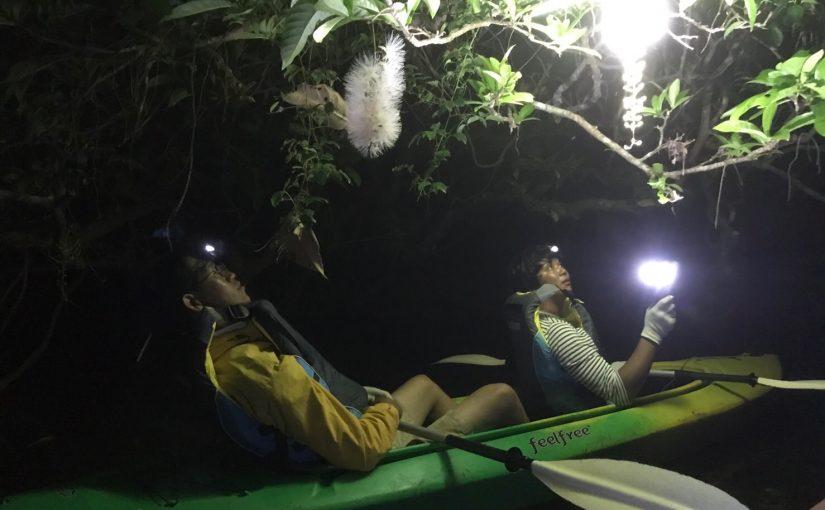 サガリバナカヌー