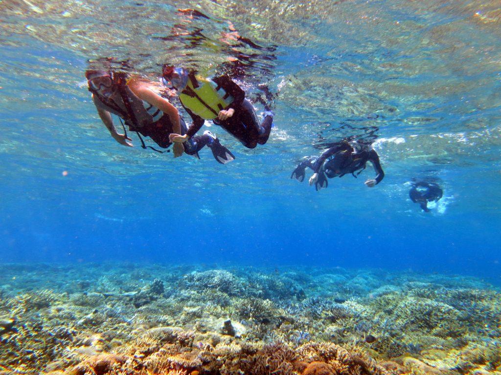 西表島のきれいな海をシュノーケリングで泳ぐ