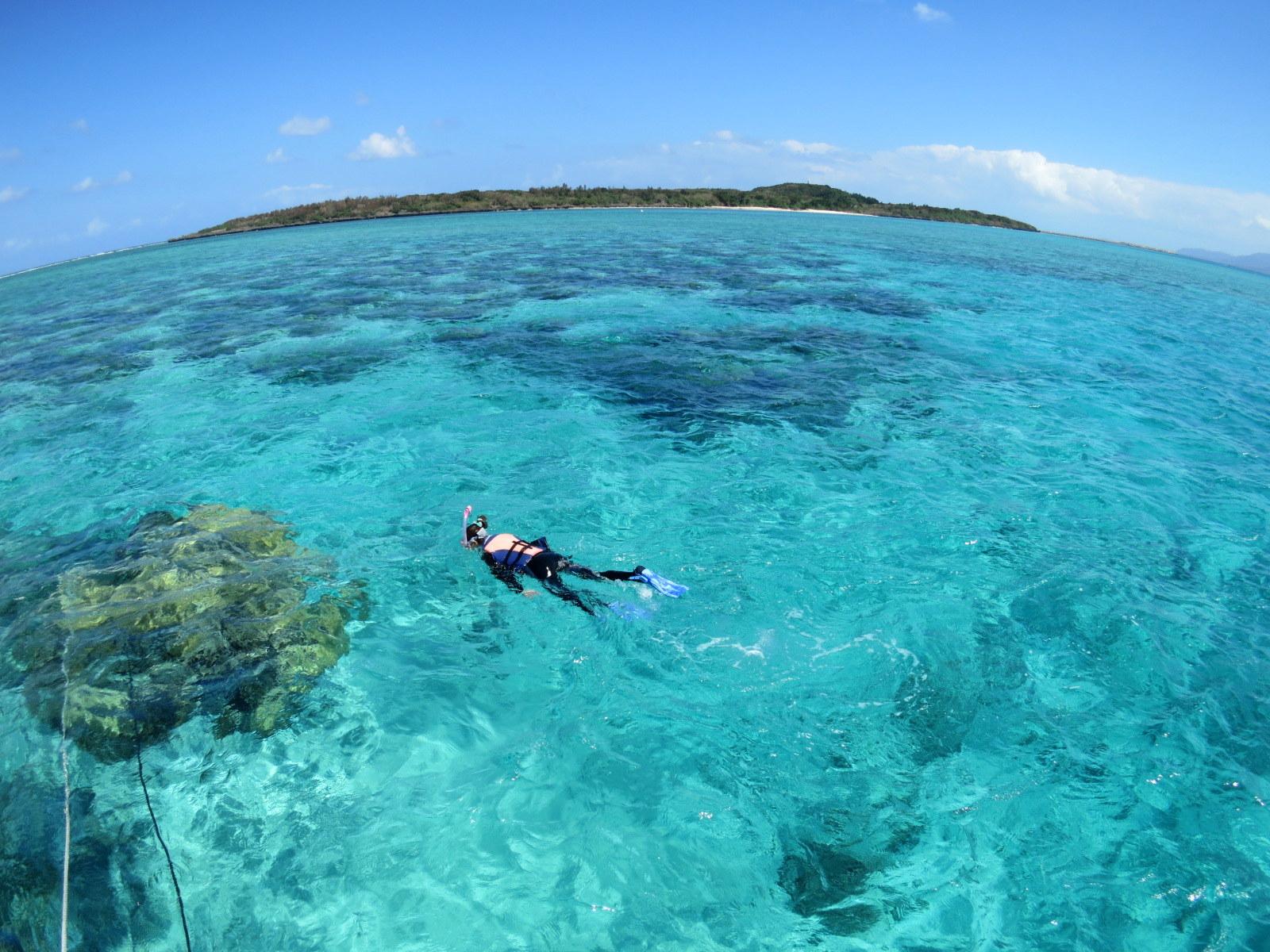 西表島ツアーを一人旅で満喫