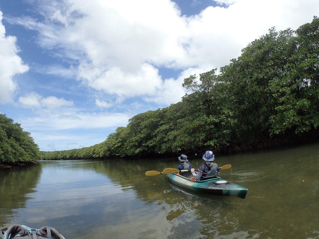 西表島の壮大な自然の中をカヌーで川下り