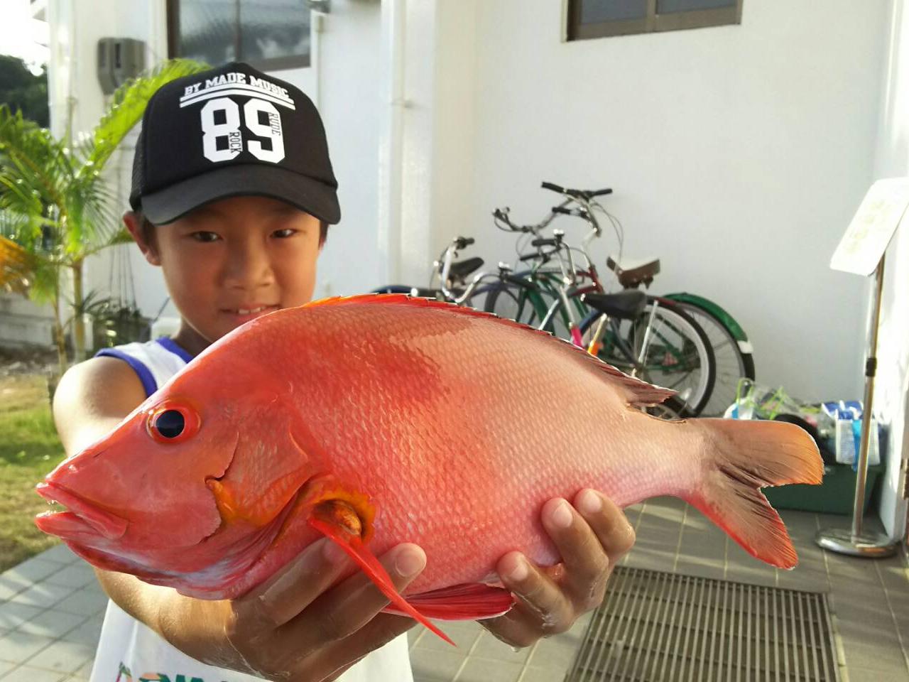 西表島釣りツアーで魚を釣り上げた少年