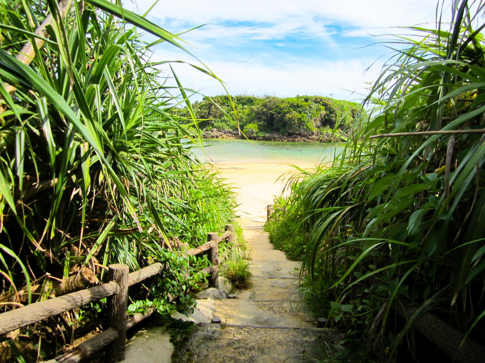 西表島の星砂海岸へ続く小道