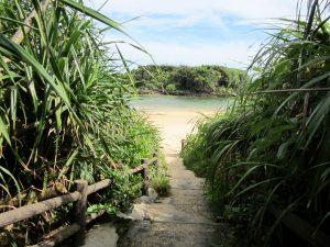 西表島の星砂海岸へ抜ける小道