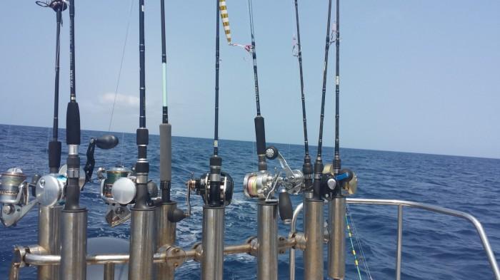 釣りツアーアクティビティで使う釣竿