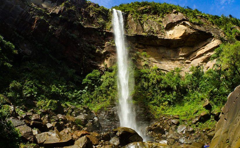 八重山最大級のピナイサーラの滝