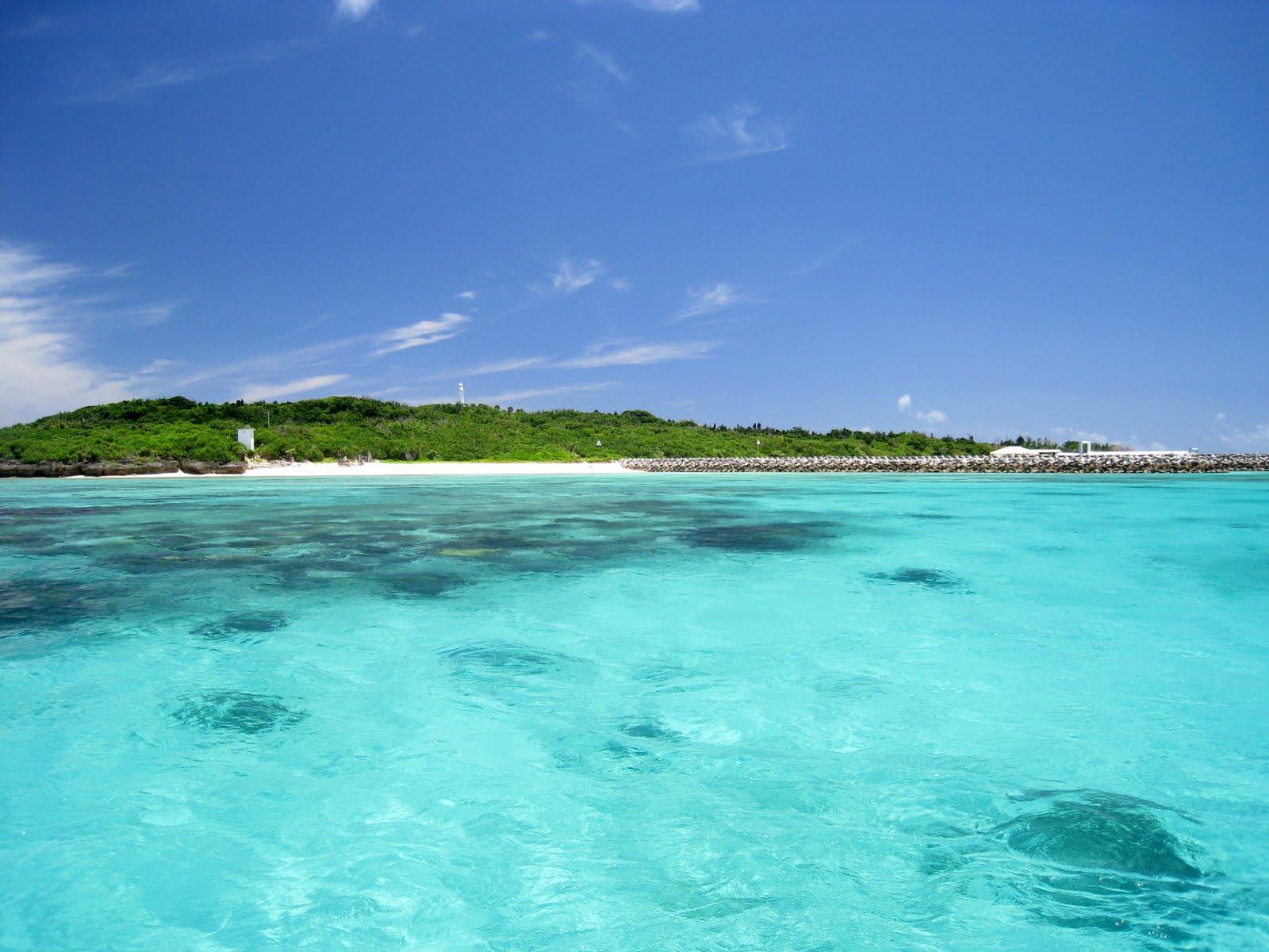 西表島の大自然が見渡せるビーチでのアクティビティ