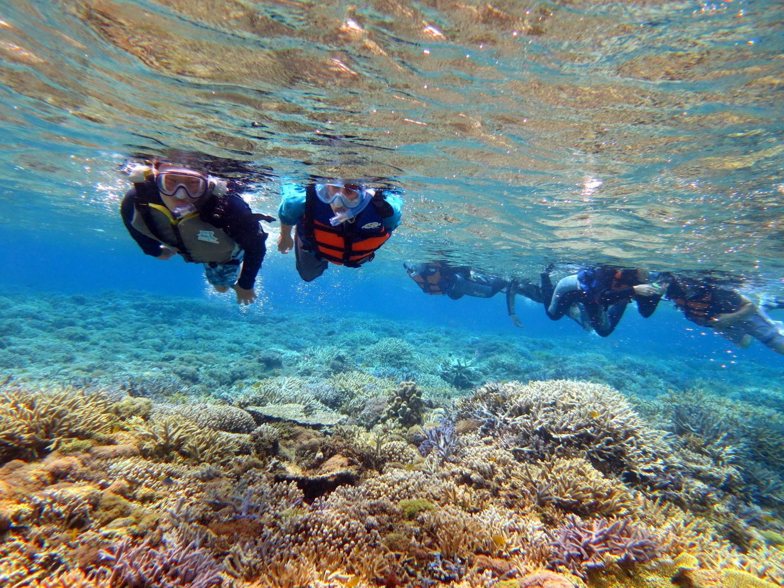 西表島の美しい海を泳ぐグループ