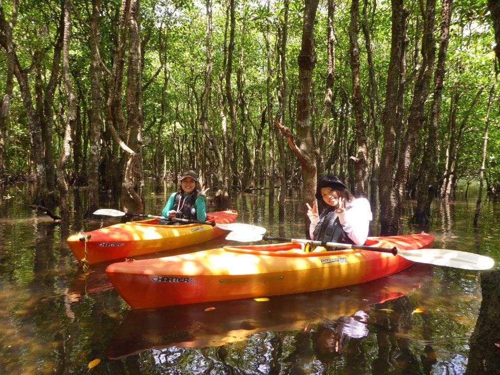 西表島のマングローブの間をカヌーでクルージング