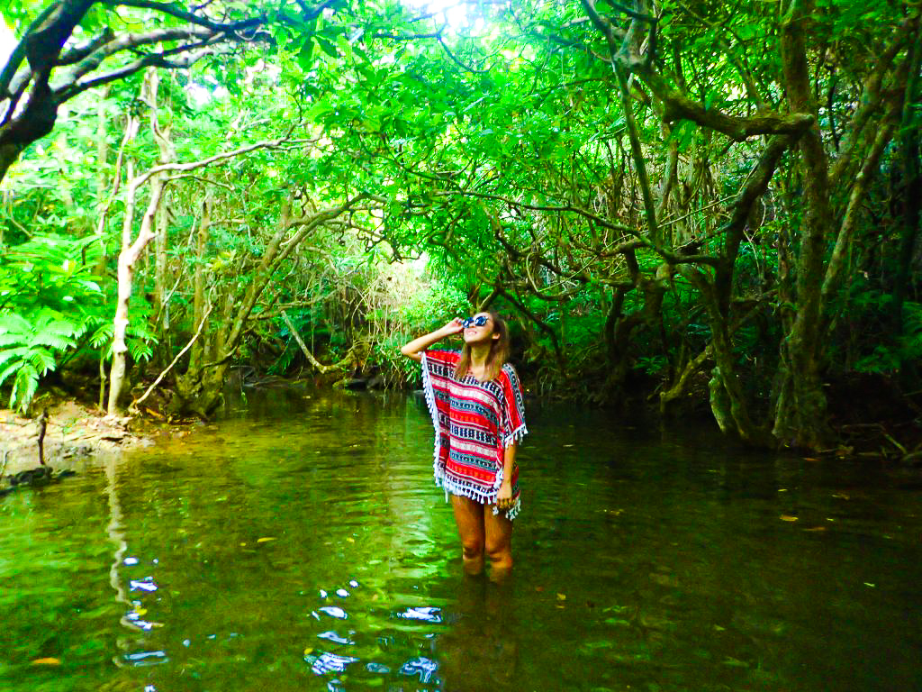 森林浴に浸るツアー参加者