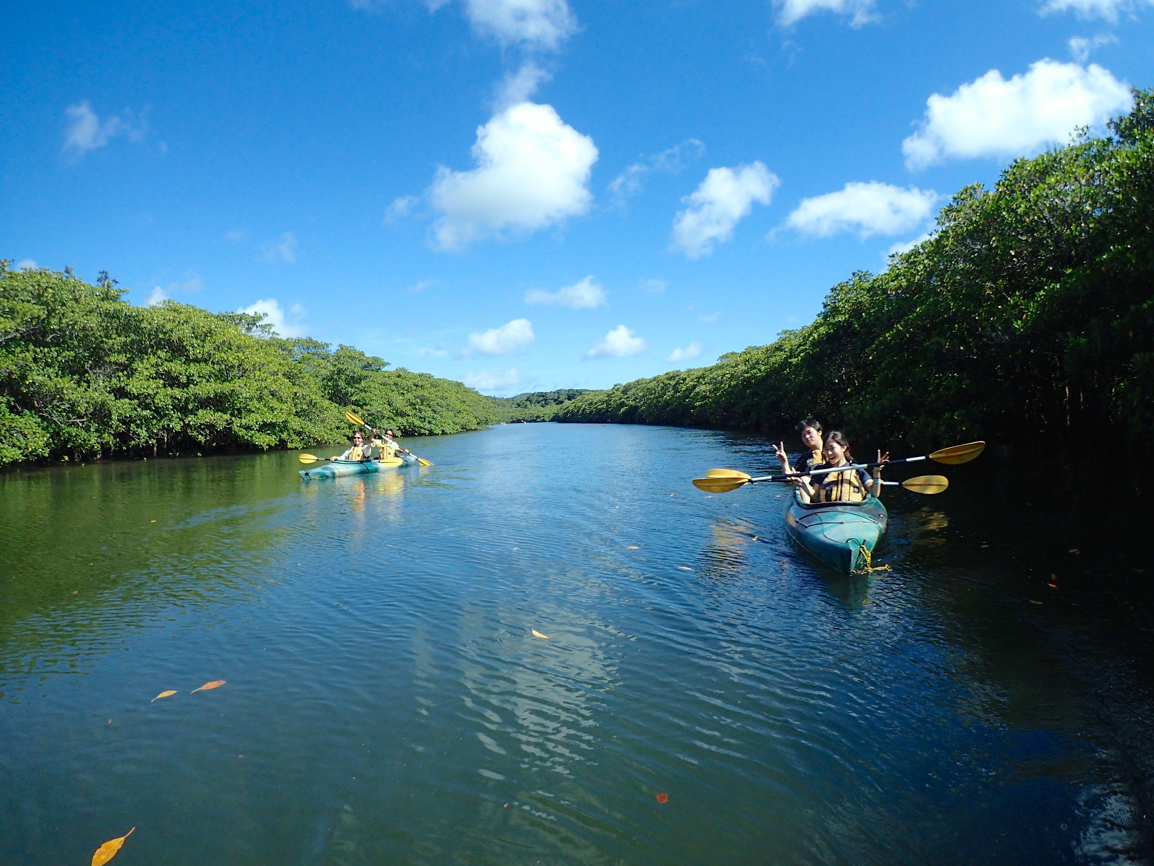 西表島のきれいな川をカヌーでクルーズ