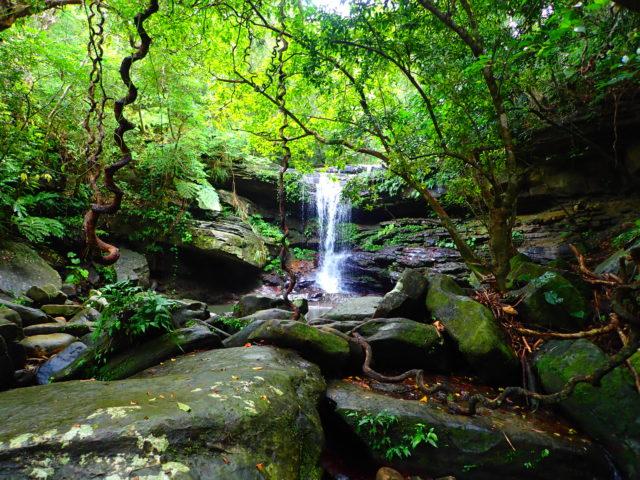 西表島のクーラの滝