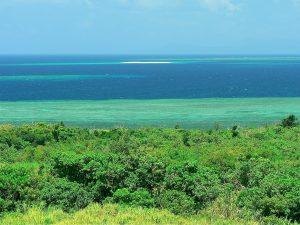 ホテルのバルコニーから見るバラス島