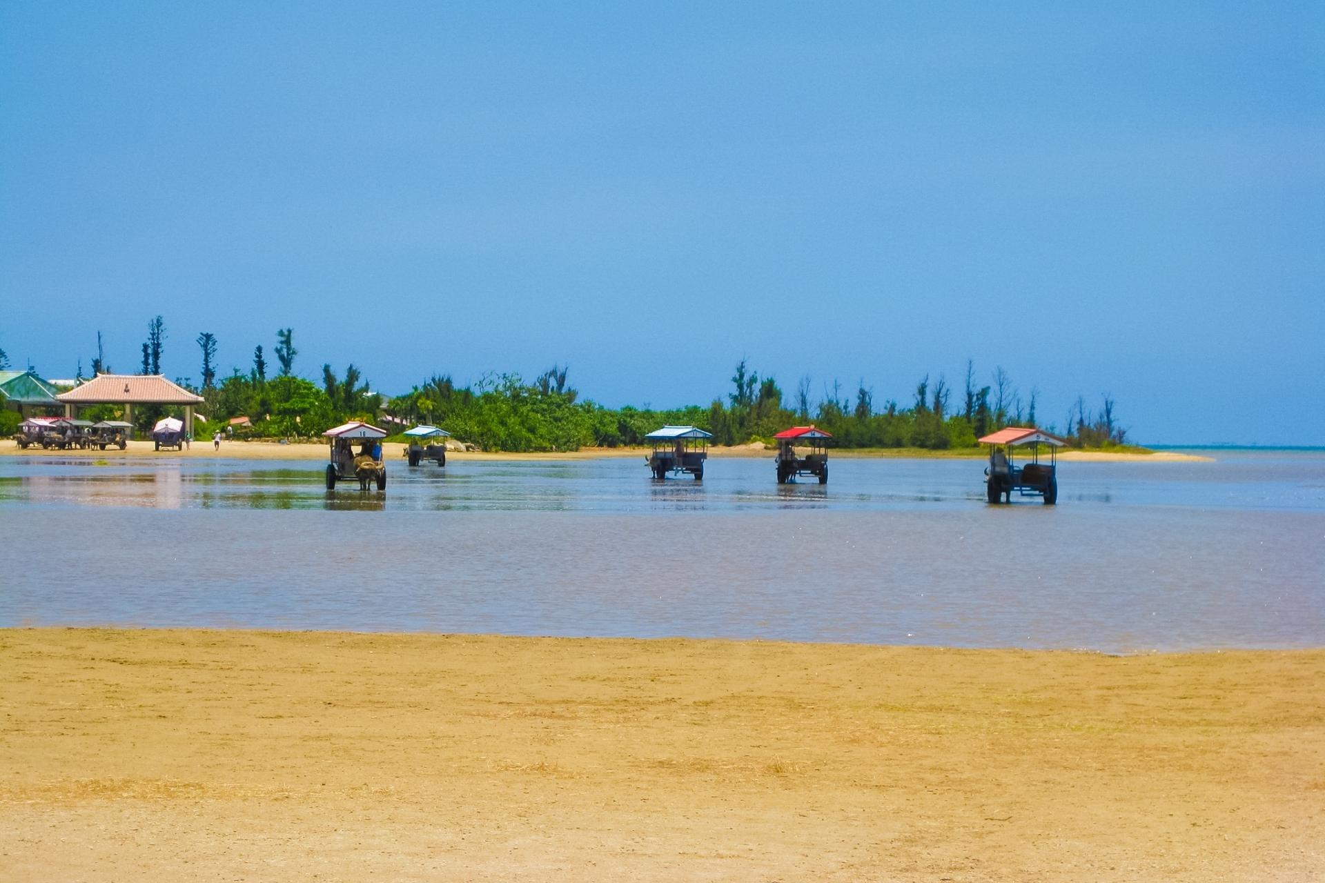 西表島から由布島へ行くツアー