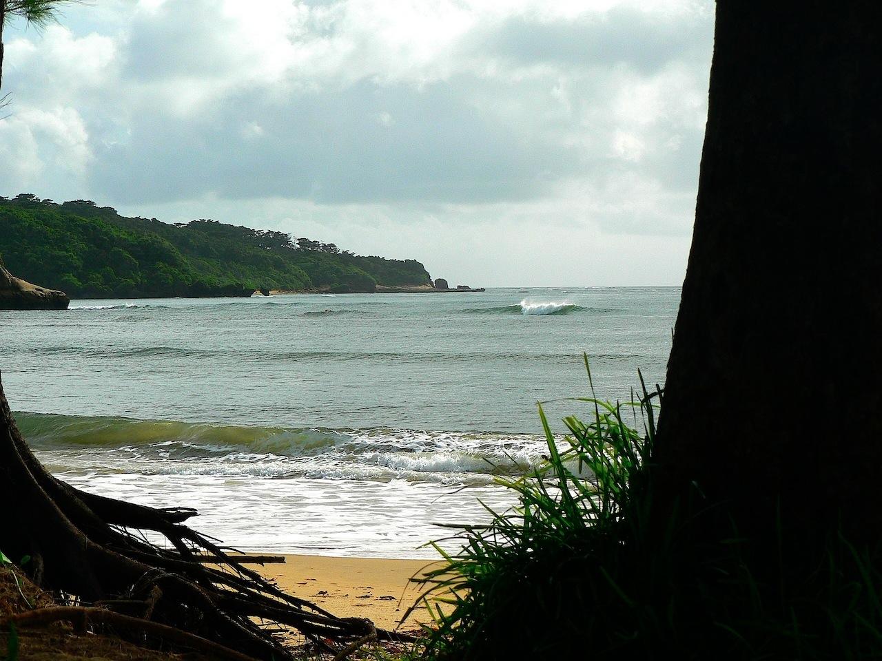 西表島秘境のビーチイダの浜
