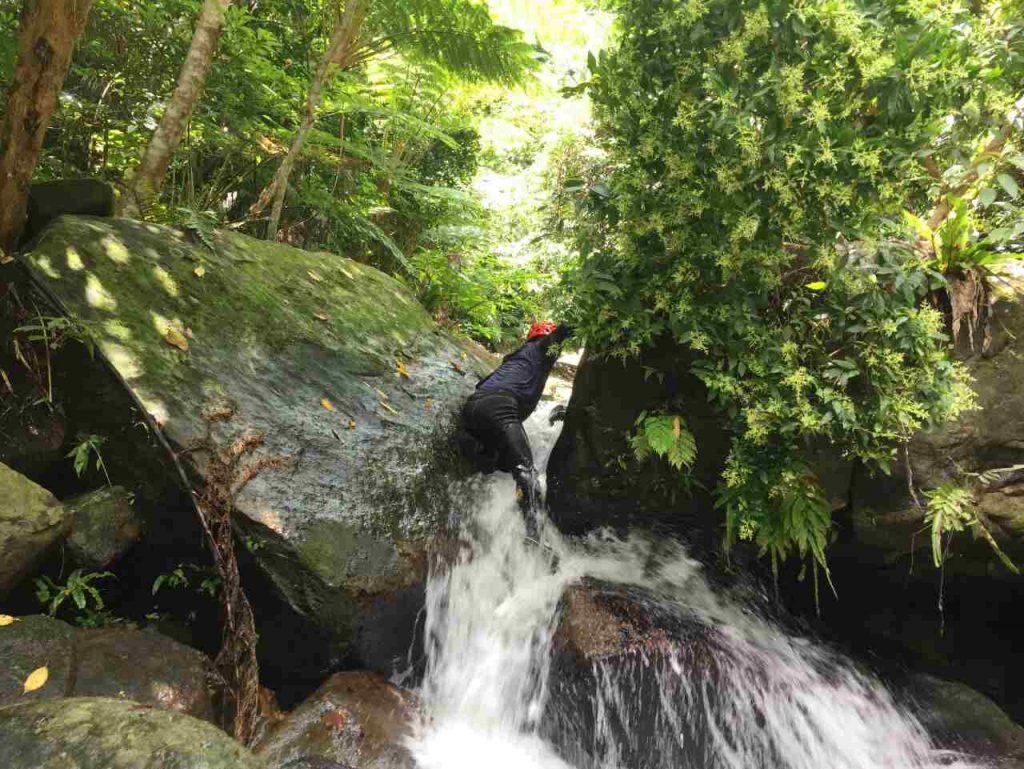 ゲータの滝ジャングルトレッキング