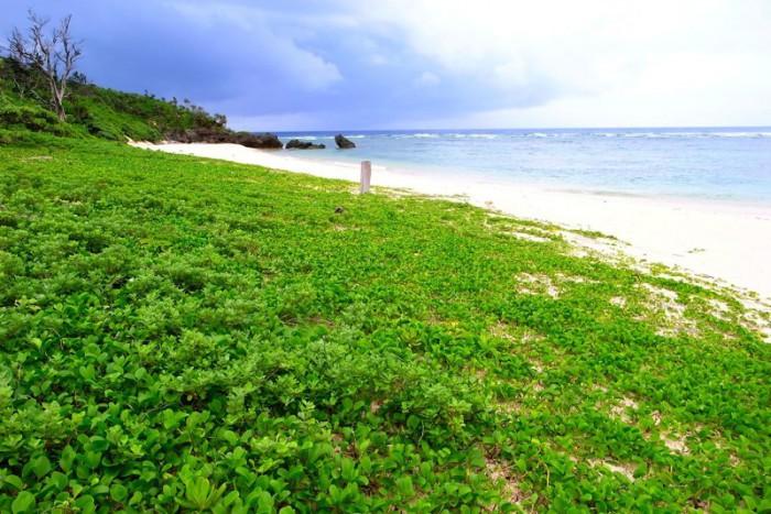 西表島の内緒の秘境ビーチ
