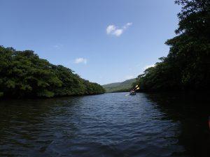 西表のユツン川