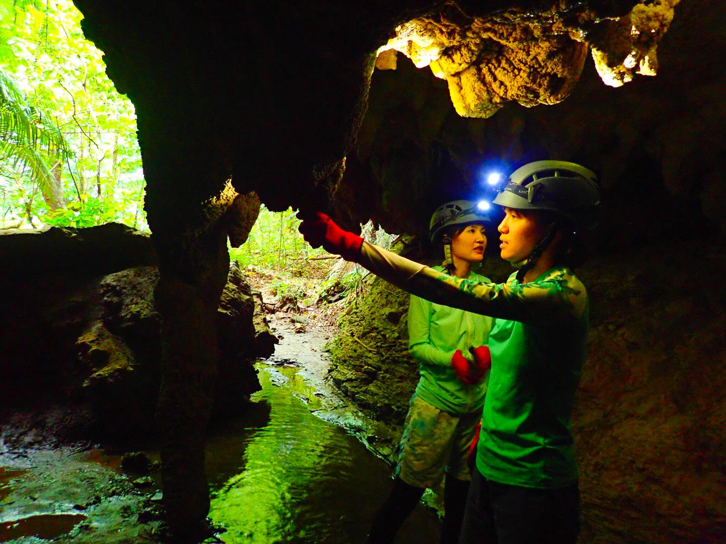 鍾乳洞体験ツアー