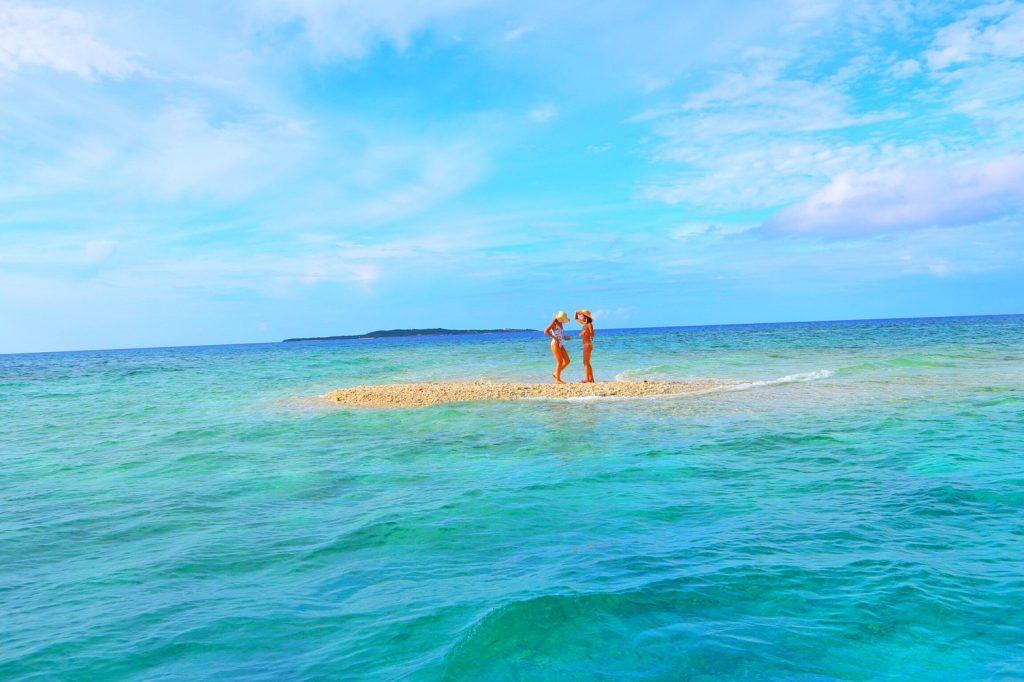 西表島バラス島で撮影