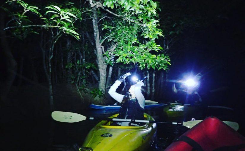 西表島ナイトジャングルカヌー