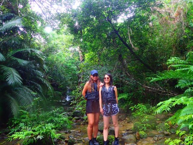 西表島のジャングルトレッキング