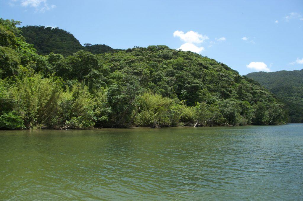 沖縄県最大の河川である浦内川