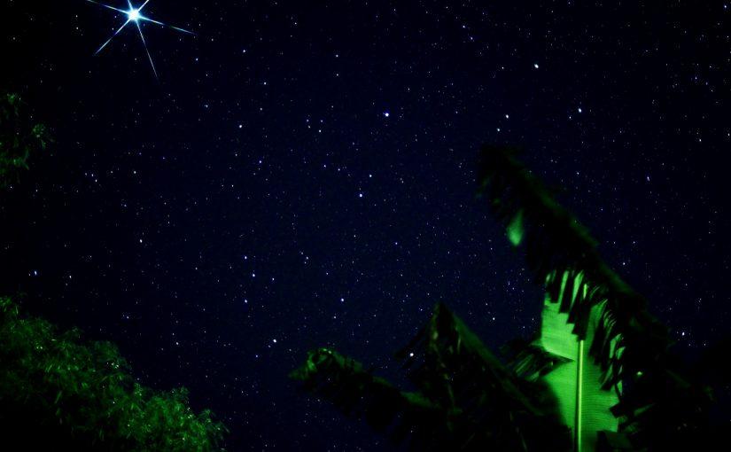西表島の星空鑑賞アクティビティ
