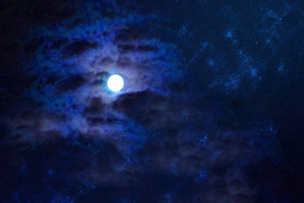 うなりざきの月明かりの下で