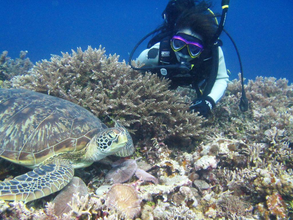 西表島ダイビングアクティビティ