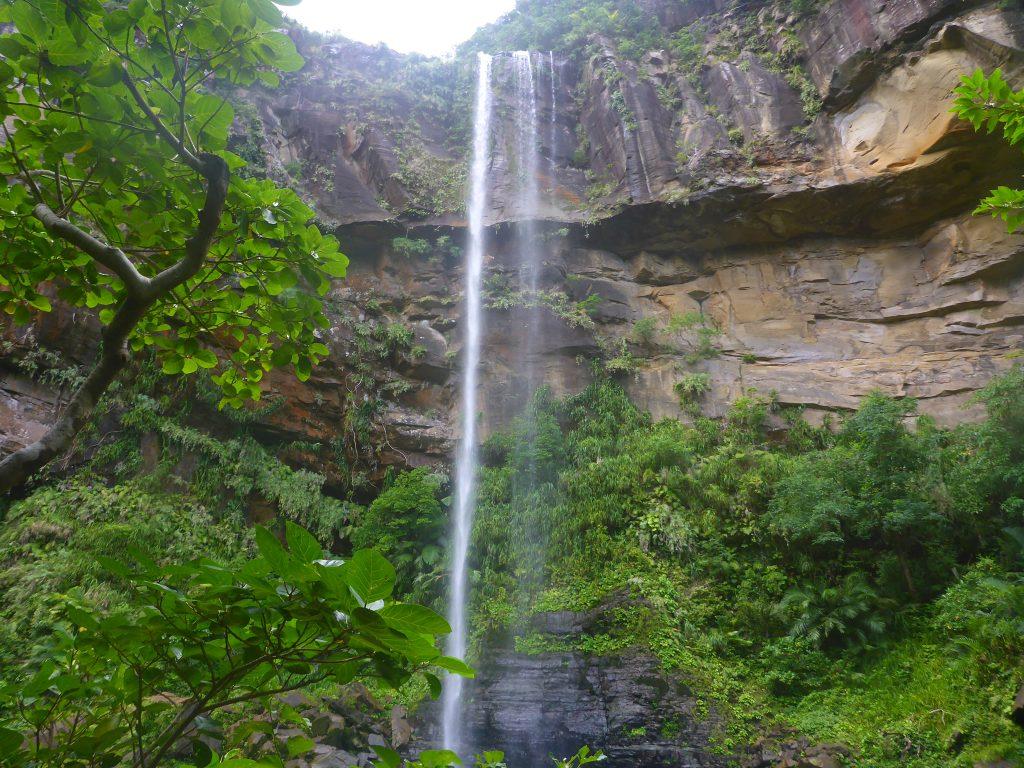 西表島ピナイサーラの滝にて