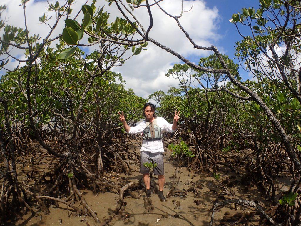 西表マングローブの木に囲まれたお兄さん