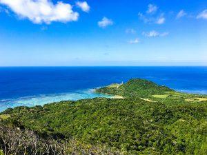 西表島の風景