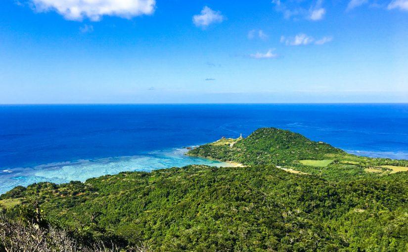 西表島 観光 ツアー