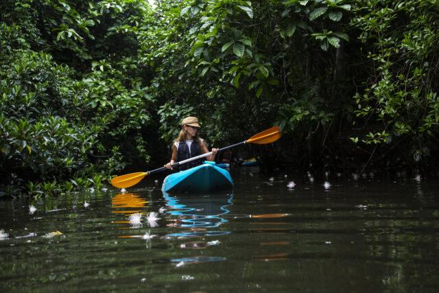 サガリバナの川で女性がカヌー